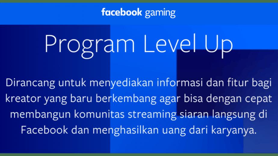 Program level up facebook gaming